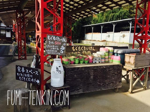 広島の牧場トムミルクファームのえさやり体験