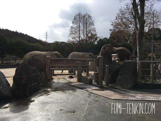 安佐動物園のバックヤードガイド体験